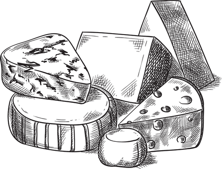 Creative conceptual vector. Sketch hand drawn cheese illustration, engraving, ink, line art, vector. Ilustracja