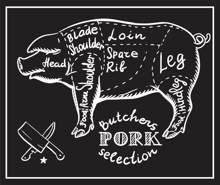 Kreatywne koncepcyjne wektora. Szkic ręcznie narysowanego mięsa w sklepie mięsnym przepis ilustracji, kreda, tusz, sztuka linii, wektor.