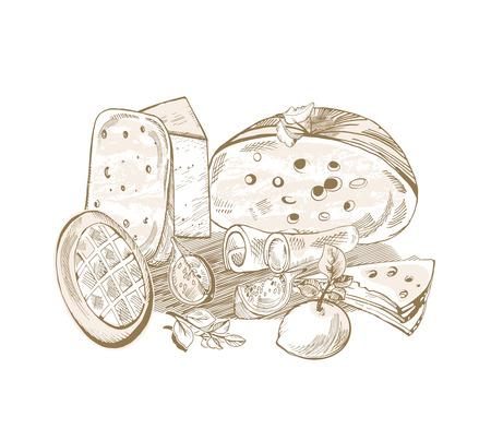 Sketch hand drawn cheese illustration