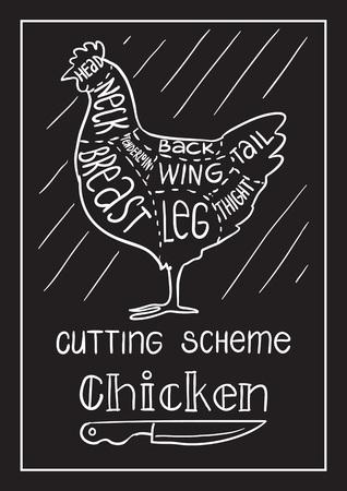 創造的な概念ベクトル。手描き肉肉屋店レシピ イラスト、チョーク、インク、ライン アート、ベクトルをスケッチします。