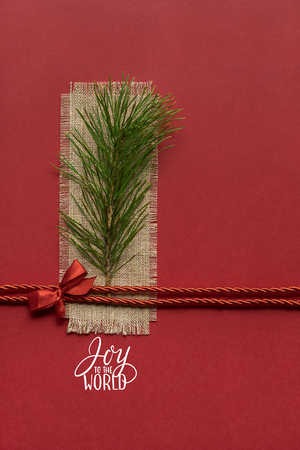 Creative concept photo of a christmas tree twig on red background.