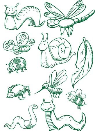クリエイティブな概念ベクトル。描かれた昆虫セット。