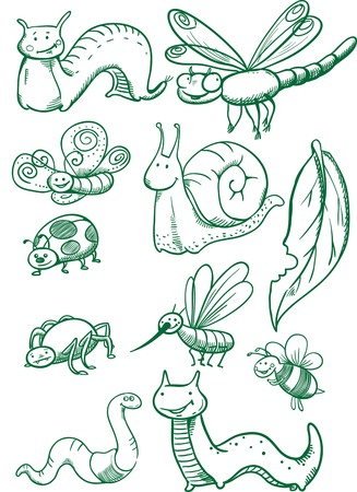 Creative conceptual vector. Drawn insects set.