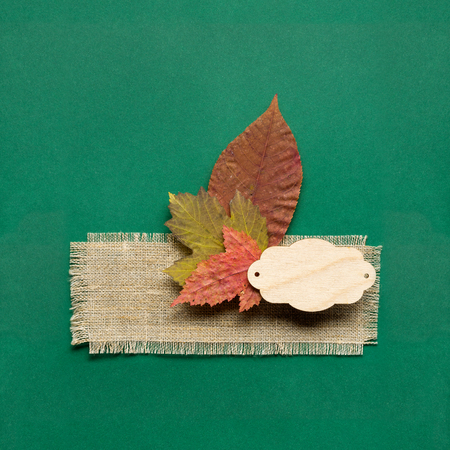 Creative thanksgiving day concept photo of leaves on green background.