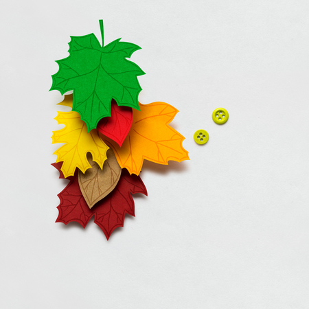Creative thanksgiving day concept photo of leaves made of paper on white background.