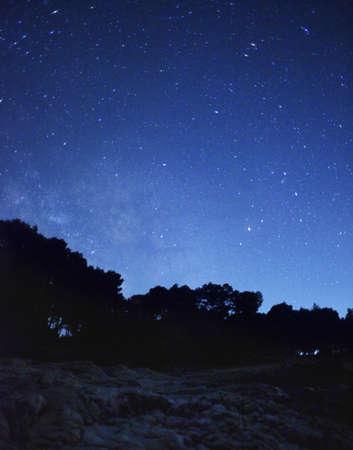 ray trace: Paisaje nocturno con las estrellas y los bosques Foto de archivo