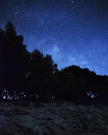 noche estrellada: Paisaje nocturno con las estrellas y los bosques Foto de archivo