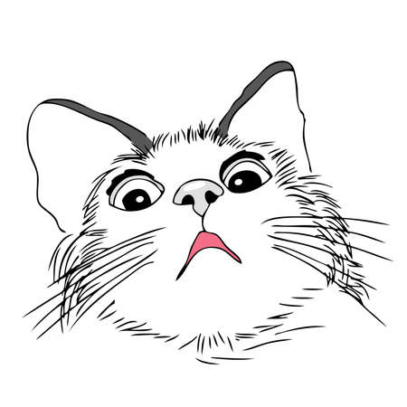 asustado: Asustado, gato preocupado, ilustraci�n mano dibujar Vectores