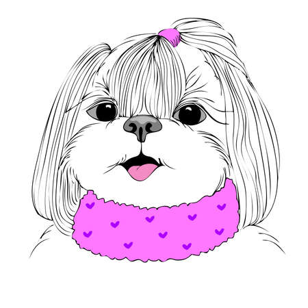 cute puppy: fashion portrait of doggy girl in pink, hand drawn vector