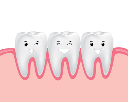 dental cartoon vector, teeth with gum
