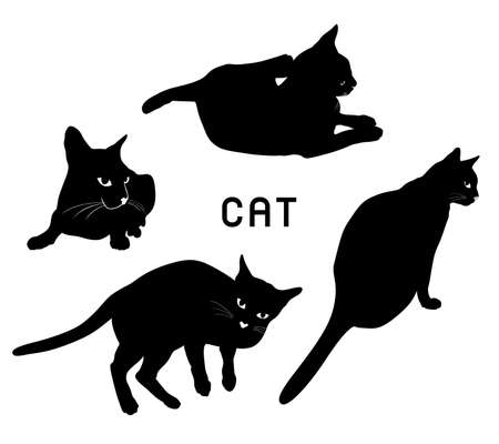 black cats. Vector illustration isolated on white background.