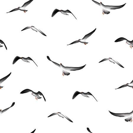 bird illustration: flying birds seamless pattern,  illustration isolated on white background.