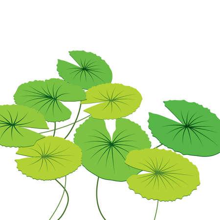 silhouette fleur: feuilles de lotus, illustration vectorielle