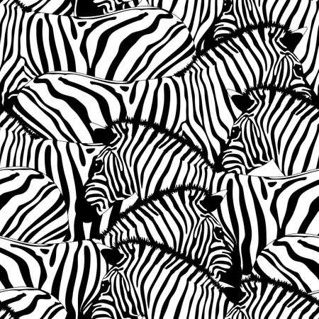 Zebra seamless ornement pattern.Savannah animal. Sauvage texture animale. Rayé noir et blanc. conception à la mode texture de tissu, illustration.
