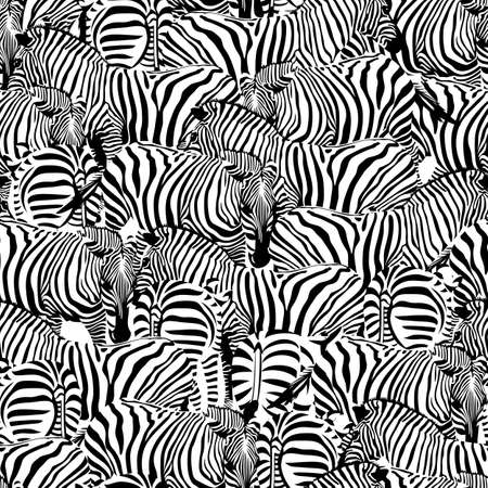 Zebra seamless pattern.Savannah Animal ornament. Wild animal texture. Striped black and white. design trendy fabric texture, illustration.  イラスト・ベクター素材
