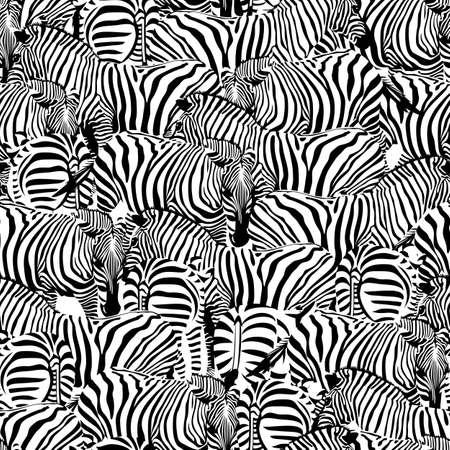 ゼブラのシームレスなパターン。サバンナに住む動物の飾り。野生動物のテクスチャです。黒と白のストライプ。トレンディな布のテクスチャ、図
