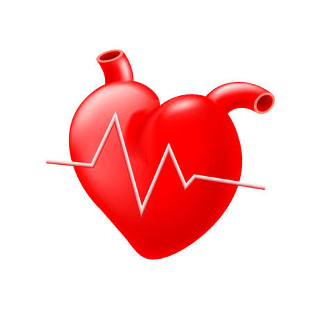 systole: Red heart with heartbeat Graph.Health care concept.  Illustration isolated on white.