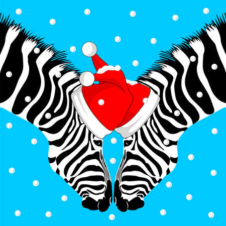 zebra skin: Zebra Couple with Santa hat and snow. Merry Christmas and Happy New Year, vector illustration on blue background. Animal skin print, texture.