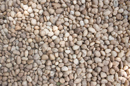 Coarse grained pebble stones. stones floor texture background.  White and brown in the garden or park.  Stock Photo