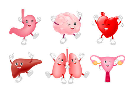 Set of funny cute cartoon internal organs. Healthy characters of brain, lung, stomach, heart, liver and uterus.  Illustration isolated on white background.