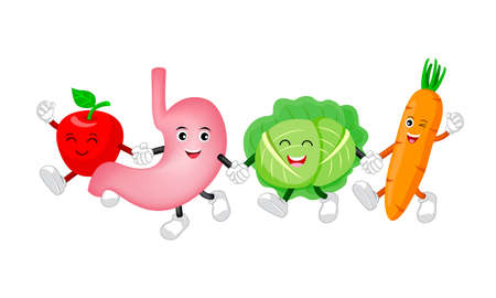 Happ healthy stomach character with cabbage, apple and carrot. Cute cartoon holding hands. Illustration isolated on white background. Digestive tract, Healthy food nutrition, stomach concept.