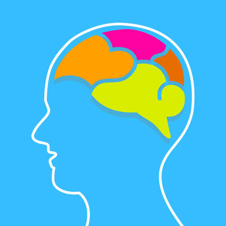 Infographics human brain design template. Split into four parts. Vector illustration isolated on blue background.
