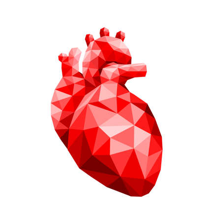 polygonal art of human heart design. faceted low-poly geometry effect. Abstract anatomy organ. Vector illustration isolated on white background.