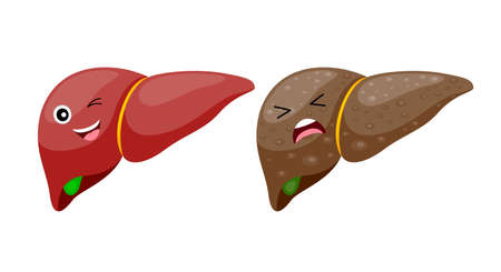 Comparison of healthy liver and cirrhosis. Liver Disease. Vector iIllustration info-graphic, isolated on white background.