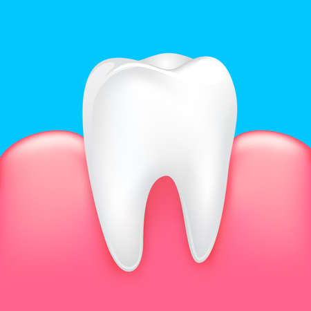 Healthy tooth with human gums. Dental care concept. Illustration isolated on blue background.