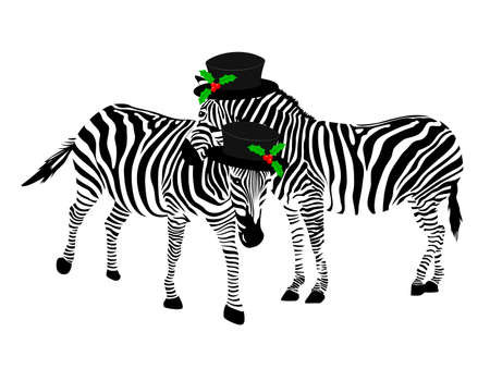 Two zebras wearing hat. Black and white, vector illustration isolated on white background. Ilustracja
