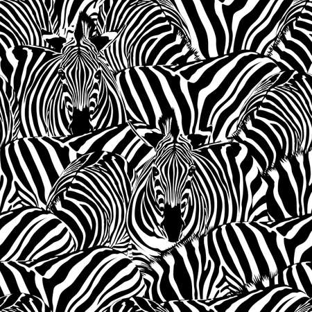 Zebra seamless pattern. Wild animal, striped black and white. design trendy fabric texture. Vector illustration isolated on white background.