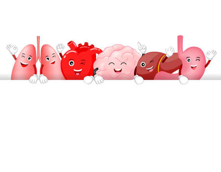 Set of funny cute cartoon internal organs. Healthy characters of brain, lung, stomach, heart and liver with text area.  Illustration isolated on white background.