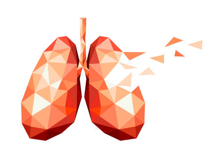 polygonal art of human lung design. faceted low-poly geometry effect. Abstract anatomy organ. Illustration isolated on white background.