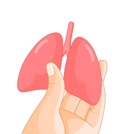 Hand holding human organ, lung. Human body part, internal organs. Health protection concept. Vector illustration isolated on white background.