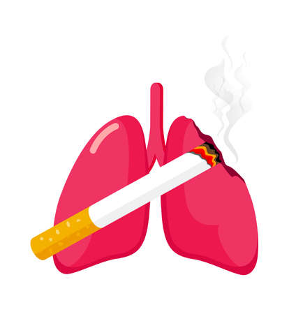 Damaged lung with cigarette. Stop smoking concept. World no tobacco day. Smoking is harmful to human organs. Resulting in organ damage and premature. Vector illustration. Illustration