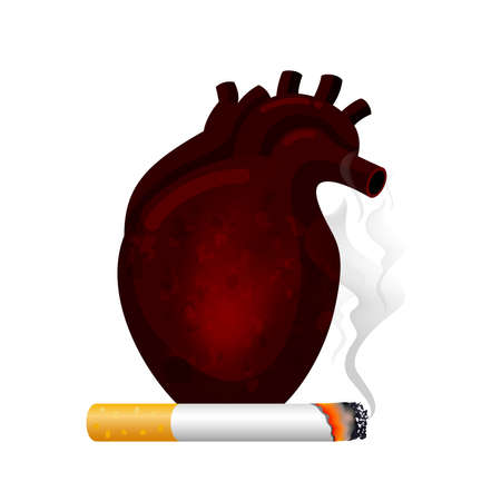 Stop smoking, World no tobacco day. Smoking is harmful to human heart. Resulting in organ damage and premature. Illustration. Illustration