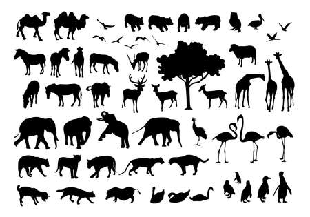 Collection of animal silhouettes. Vector illustration isolated  on white background. Wild animals.