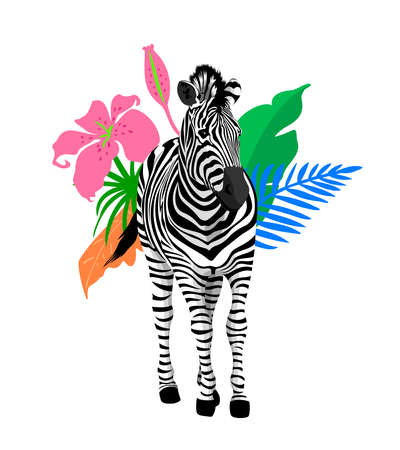 zebra with tropical leaves. Tropical jungle foliage illustration. Summer beach design. Paradise nature. Illustration