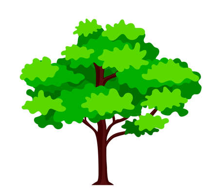 Green tree plant vector illustration. Tree for decorating gardens and home designs. Ilustração