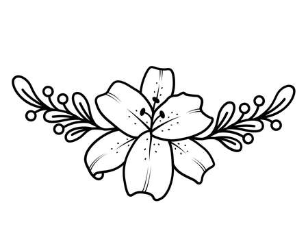 Lily outline vector illustration. Black and white drawing for the design of presentations, invitations, wedding decor.