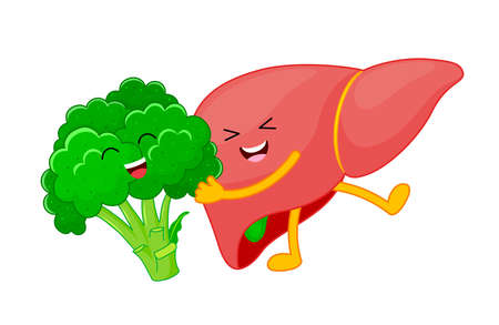 Human liver and broccoli cartoon characters. Healty food for liver concept. Vector illustration.