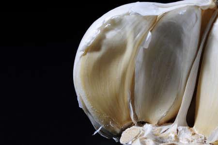 Garlic head on the black background