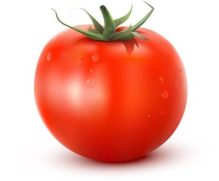 fruit salad: Tomatoe fresh vegetable Illustration