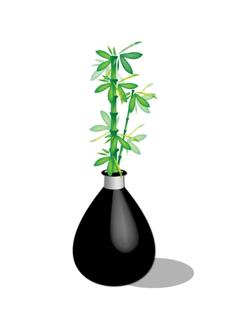 Vase with a lucky plant Stock Vector - 10703889