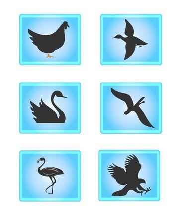 Uccelli Icons Archivio Fotografico - 10731751