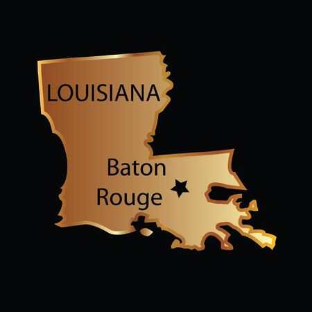 Gold louisiana state map Vector