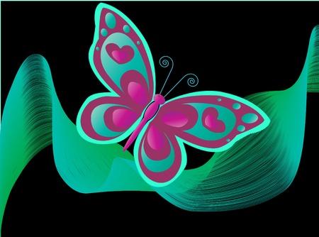 papillon rose: Papillon dans la nuit