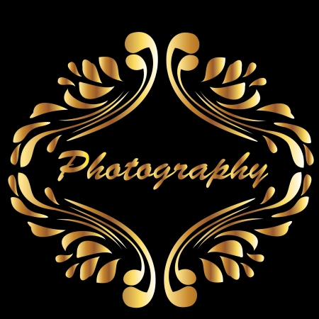 photography logo: Vintage gold style photography Illustration