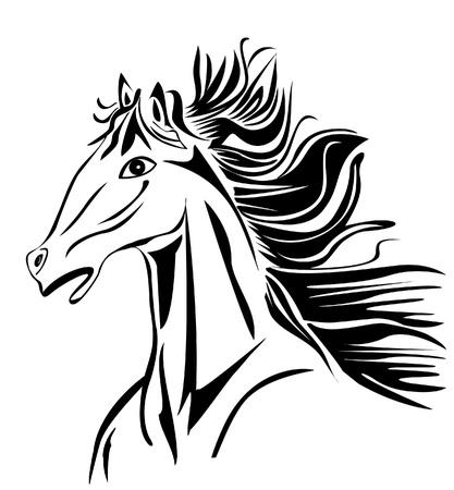 Wild Horse head stock beelden vector Stockfoto - 13159568