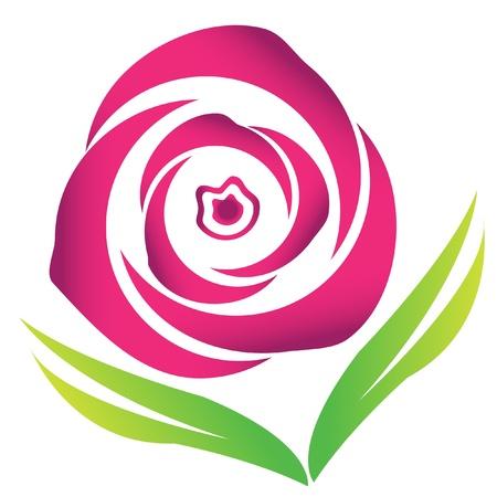 Pink blossom rose vector logo image stock